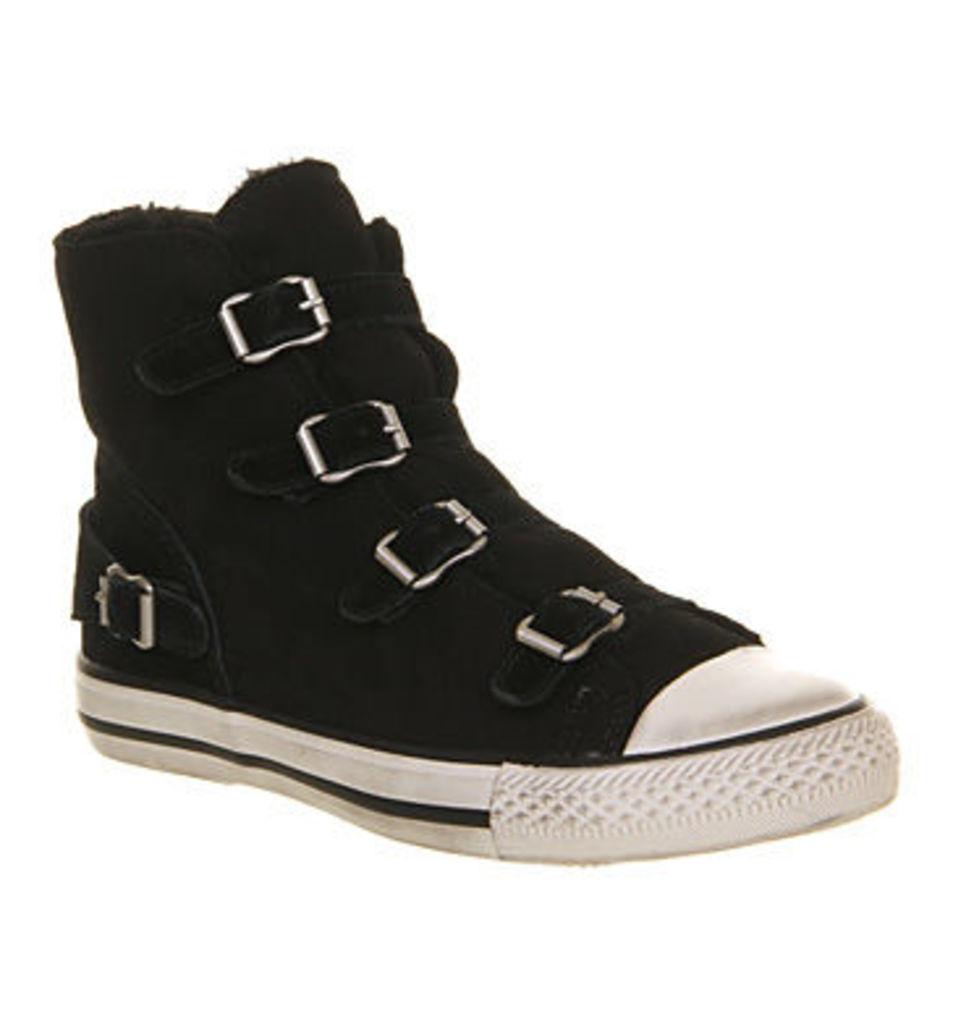 Ash Virginy Hi Top Sneaker BLACK SUEDE SHEARLING