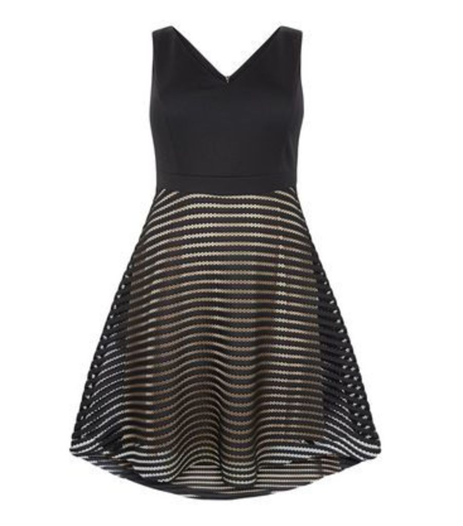 Curves Black Stripe Mesh Skater Dress