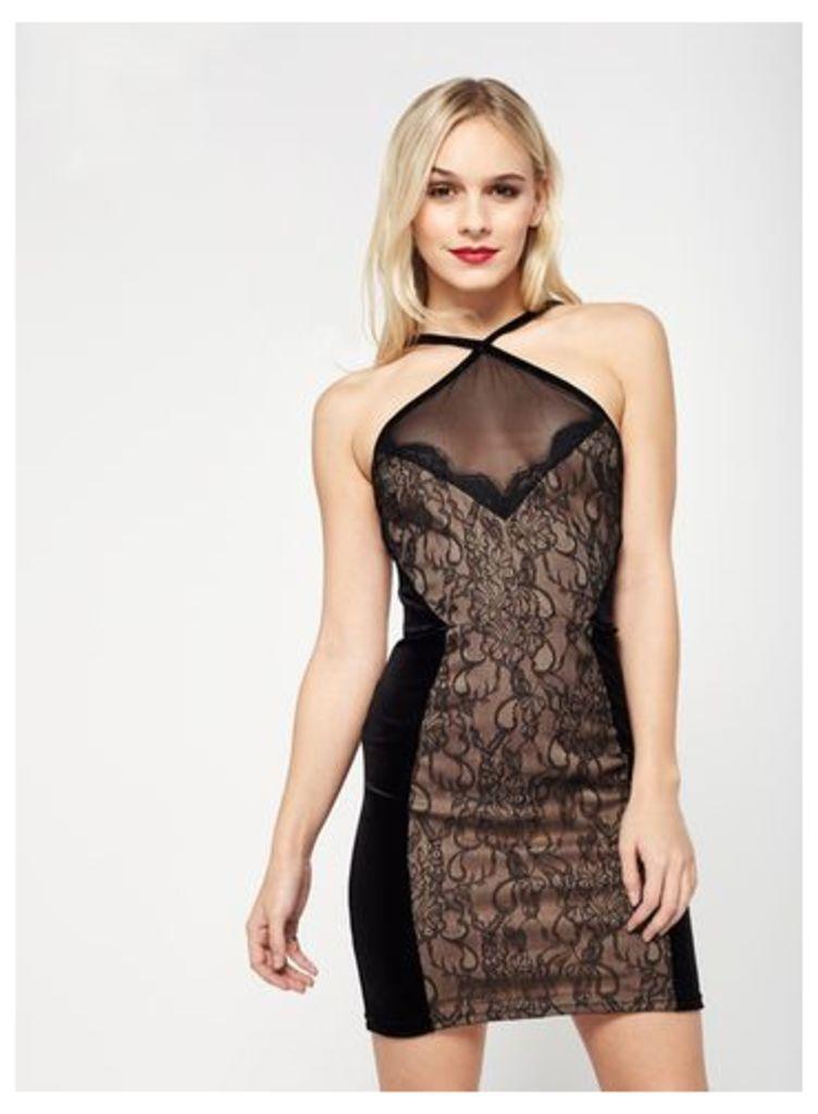 Womens PETITE Lace Bodycon Dress, Black