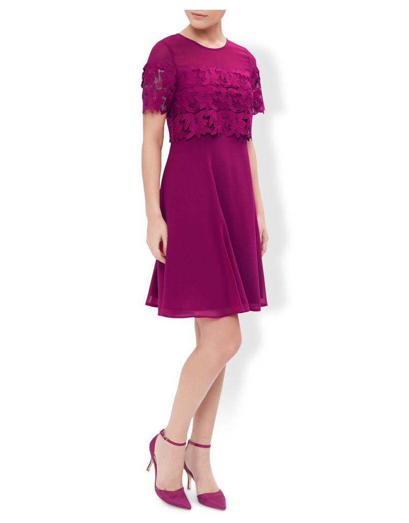 Sylvia Lace Panel Dress