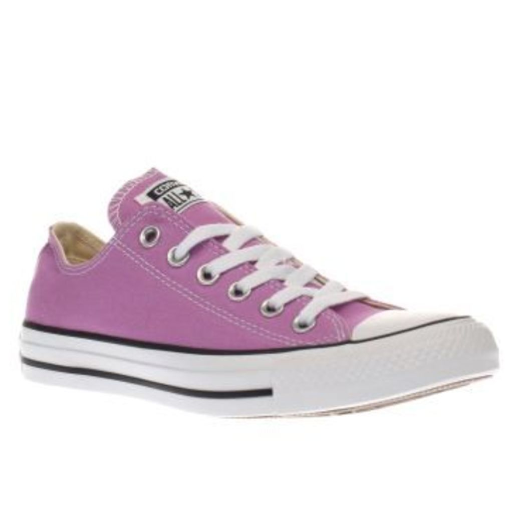 Converse Purple All Star Canvas Ox Womens Trainers