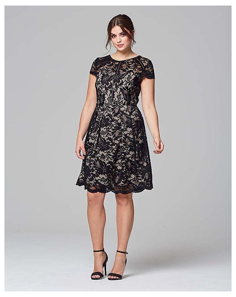 Grazia Contract Lace Cap Sleeve Dress