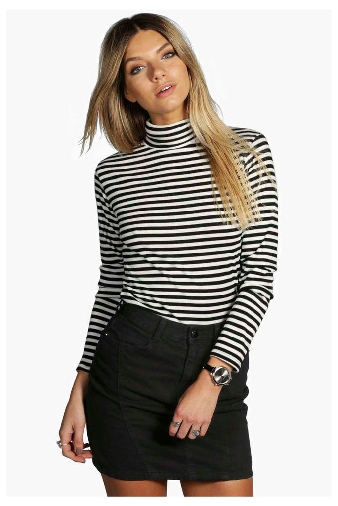 Darcy Ribbed Striped Turtle Neck Top - multi