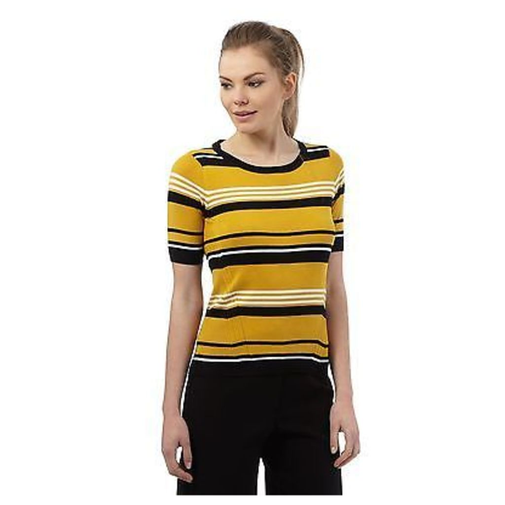 Principles By Ben De Lisi Womens Dark Yellow Striped Jumper From Debenhams