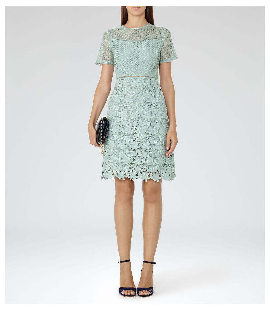 REISS Heather - Womens Lace Dress in Brown