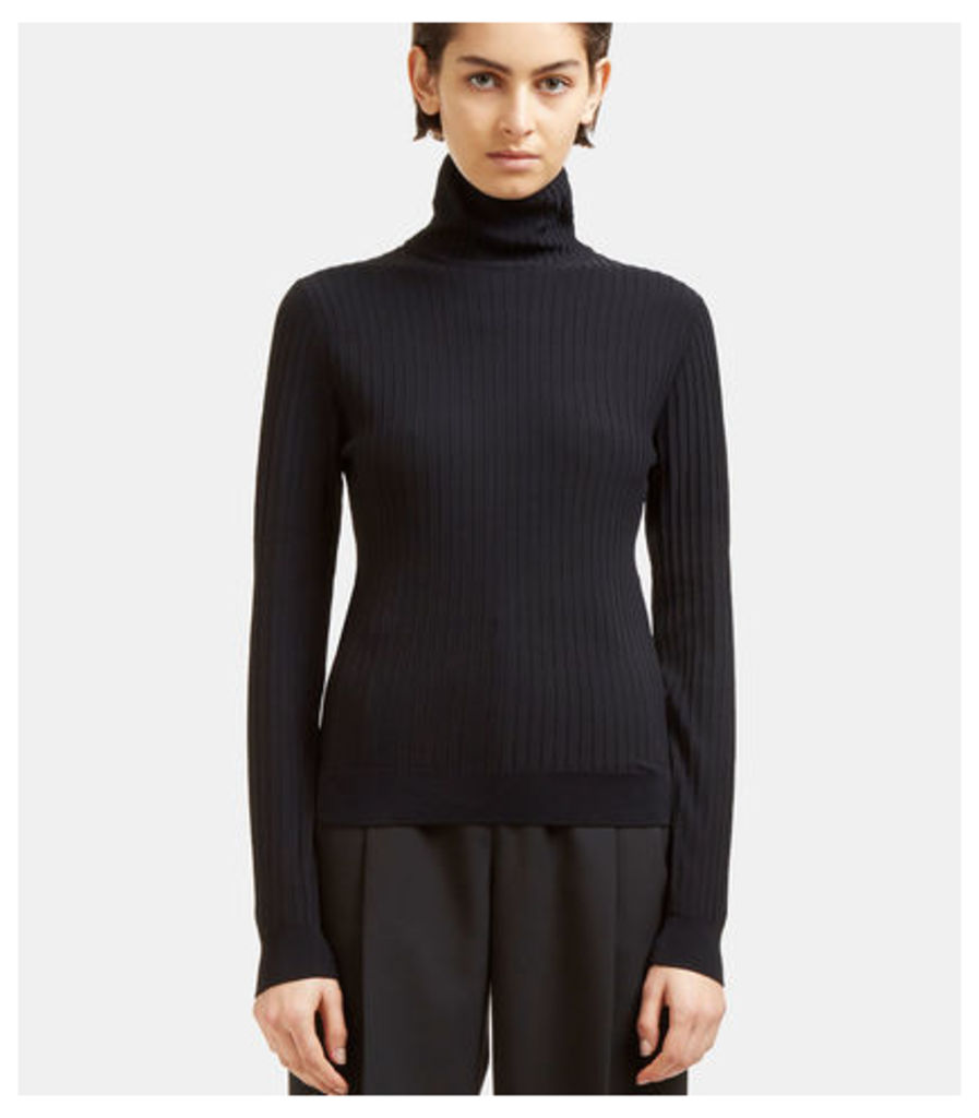Ida Ribbed Roll Neck Sweater