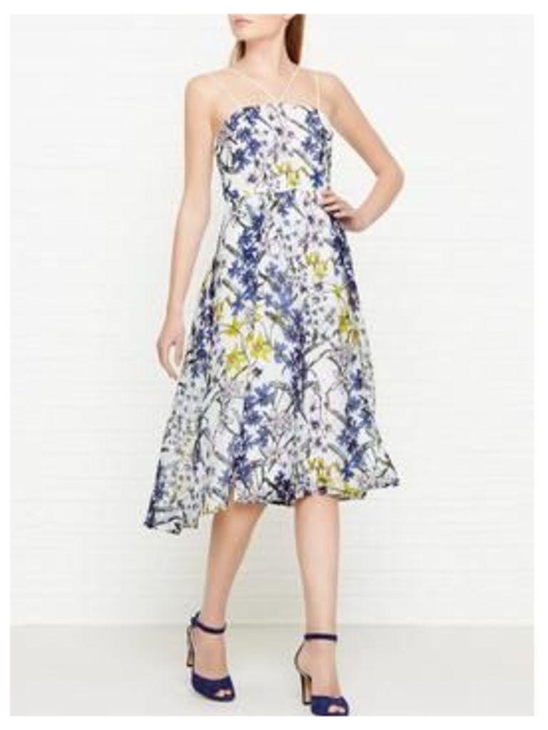 Whistles Bluebell Print Organza Dress - Multicolour