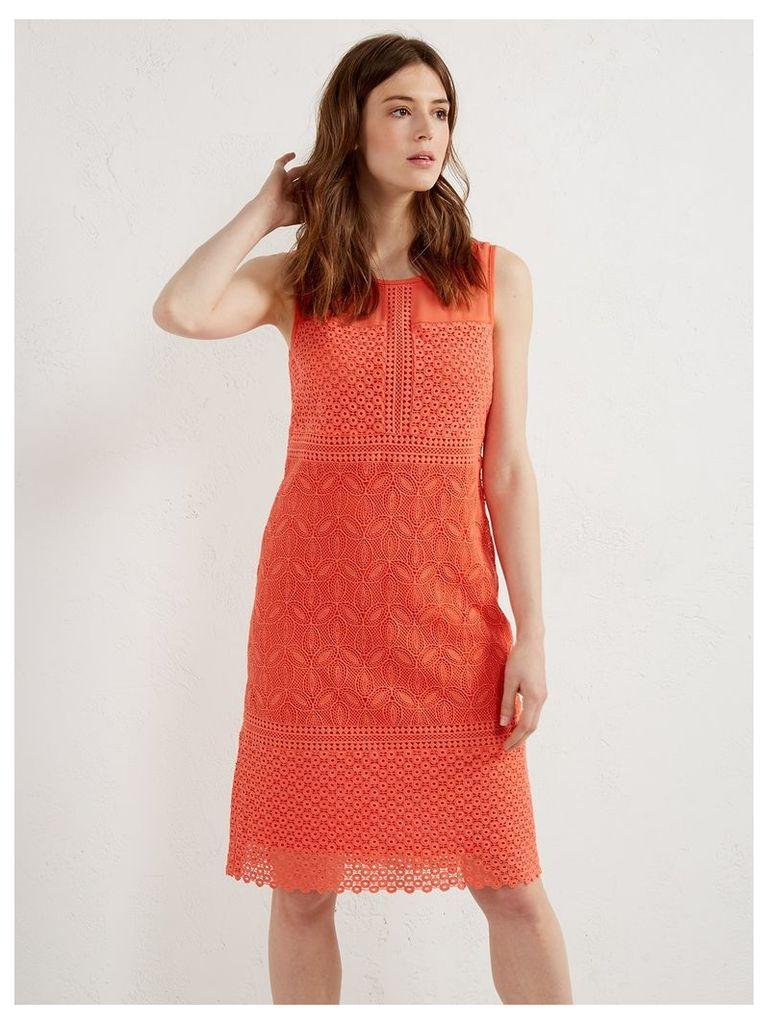 IRIS LACE PANEL DRESS