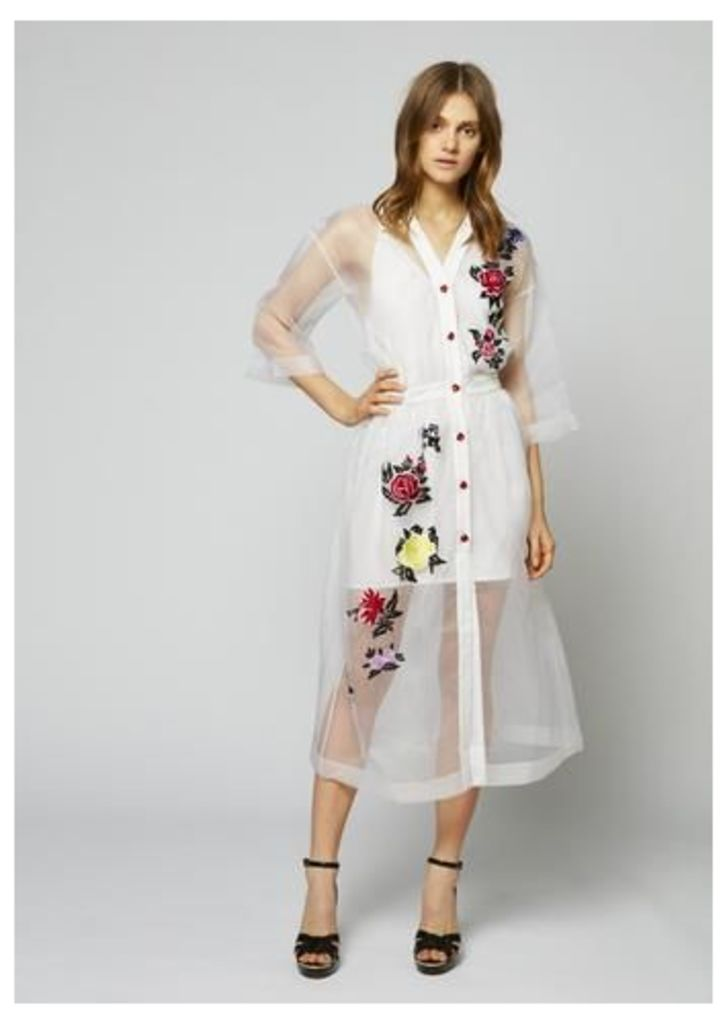 Silk Sheer Rose Shirt Dress