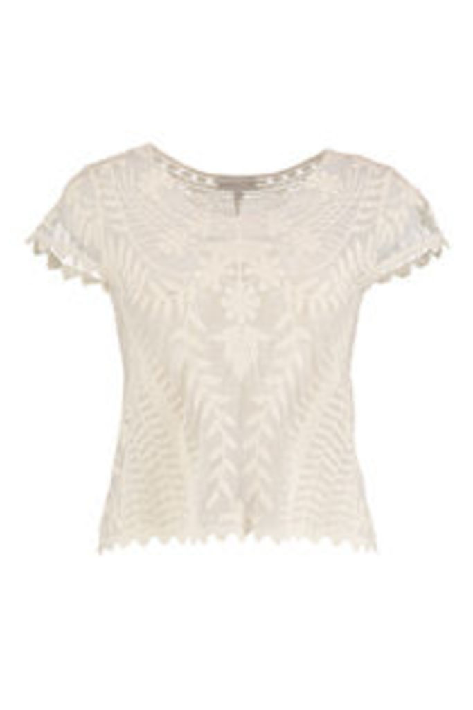 Stone Embroidered Floral & Vine Pattern Mesh T-Shirt