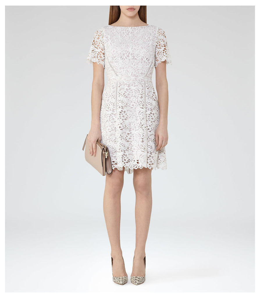 REISS Eleania - Womens Lace Fit And Flare Dress in Cream