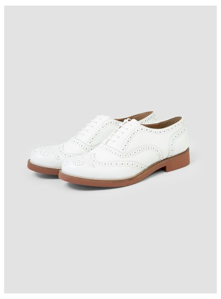 Albany Oxford Brogue Shoes White