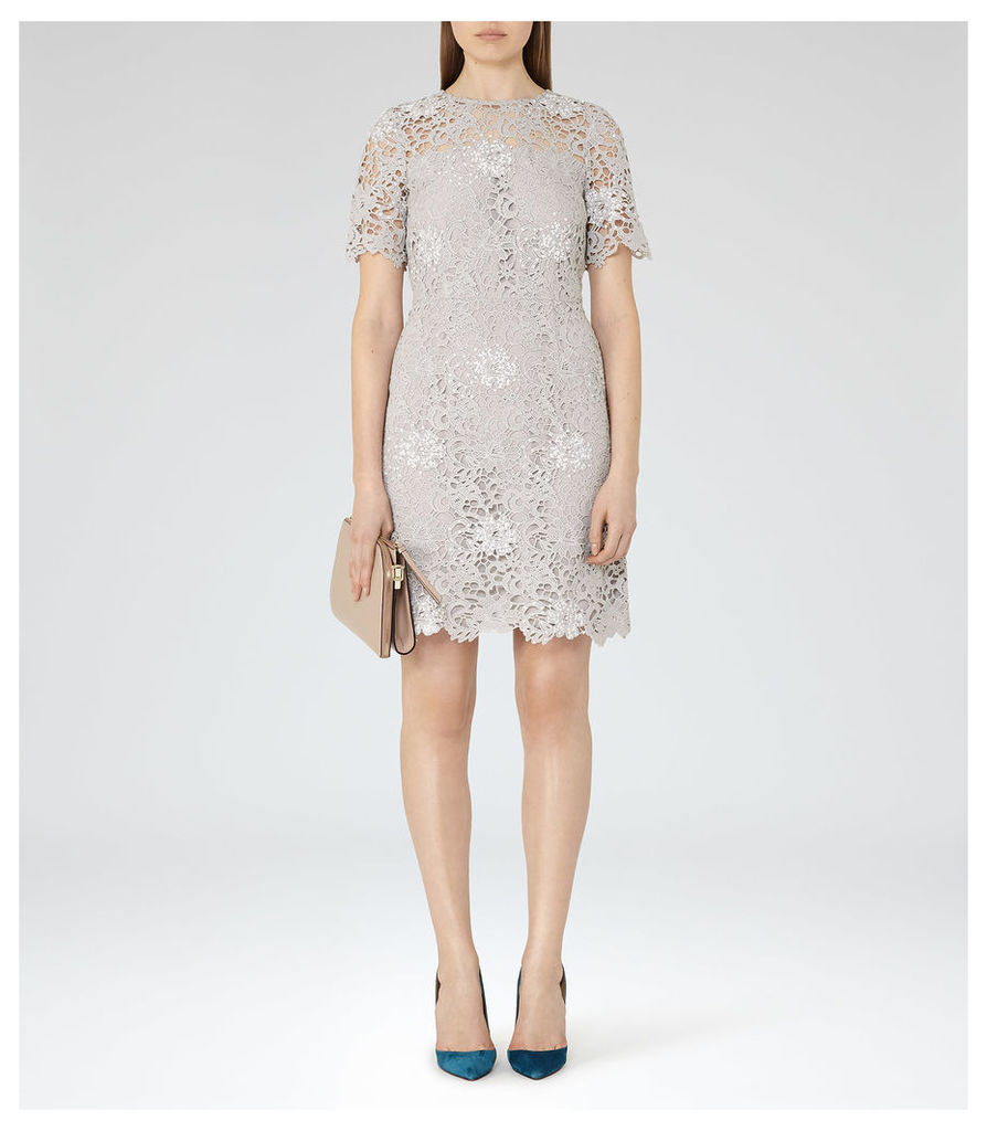 REISS Lina - Womens Lace Dress in Blue