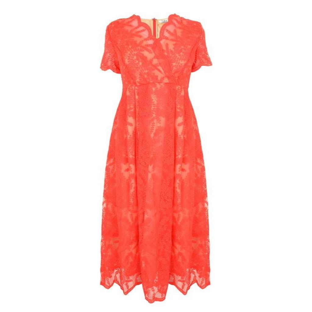 DARLING Rosalia Flared Dress