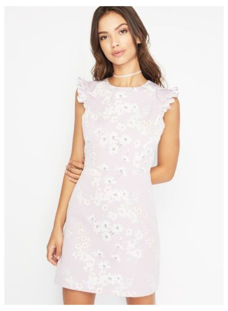 Womens Petite Otterman Dress, Pink