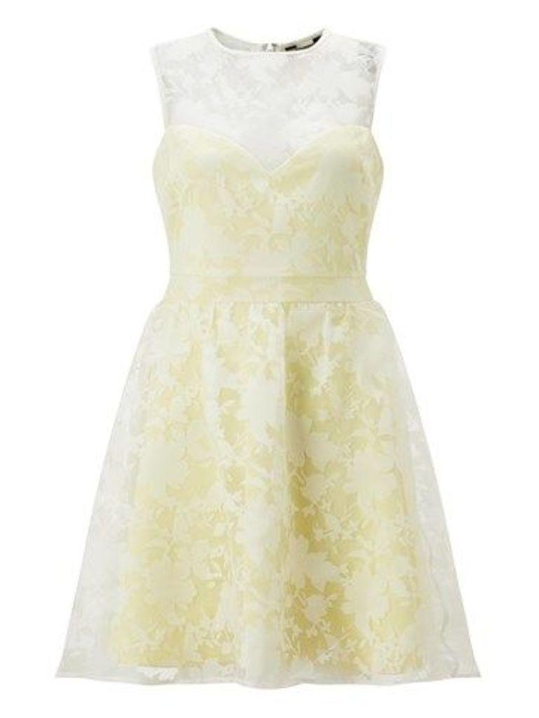 Lipsy Floral Burnout Prom Dress