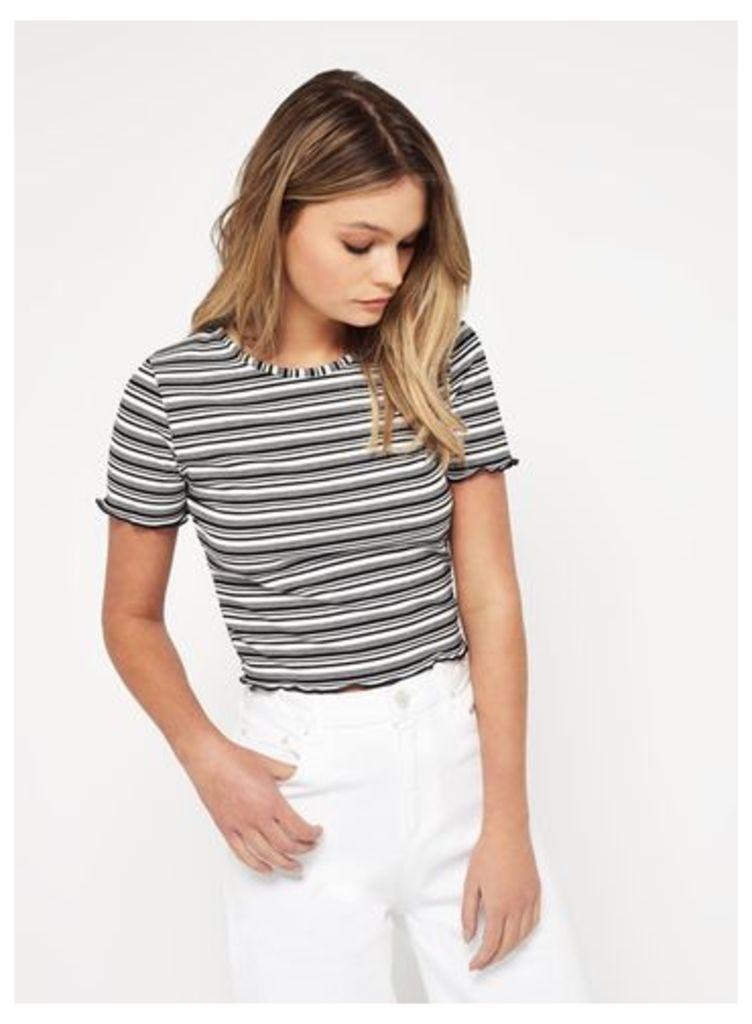 Womens PETITE Stripe Lettuce T-Shirt, Assorted