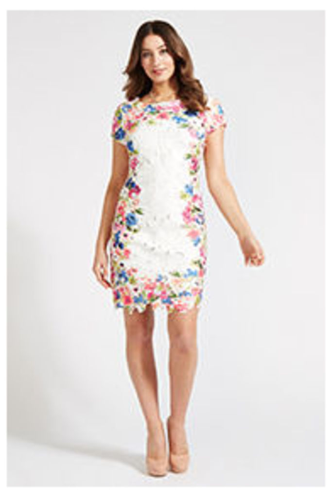 Multi-Coloured Tropical Floral Border Shift Dress