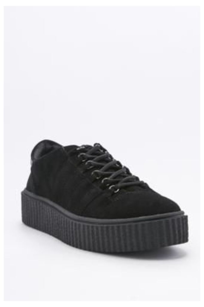 Hollie Black Suede Lace-Up Creeper Shoes, BLACK