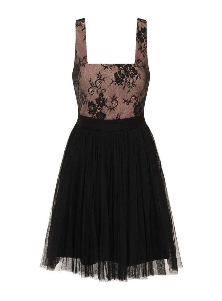 Womens **Little Mistress Black lace mini dress- Black