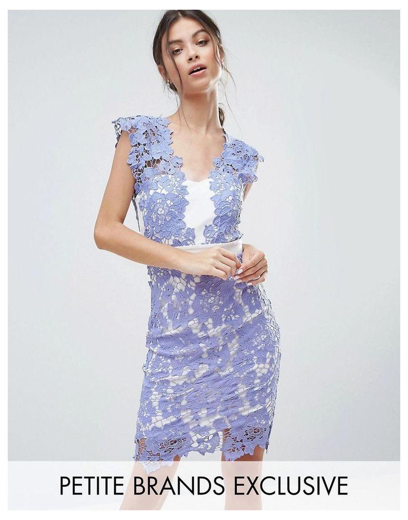 Paper Dolls Petite Allover Applique Lace Pencil Dress - Bluebelle