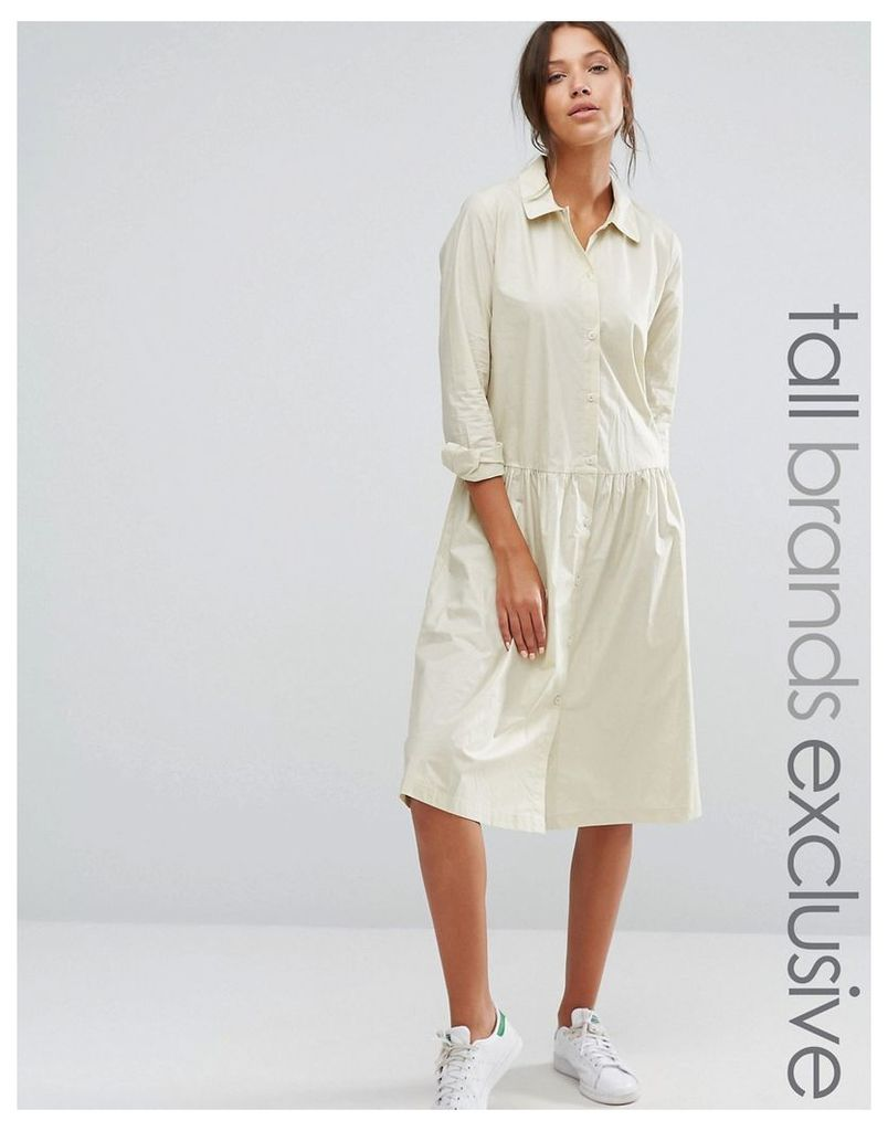 Adpt Tall Button Front Long Sleeve Dress With Collar Detail - Cream