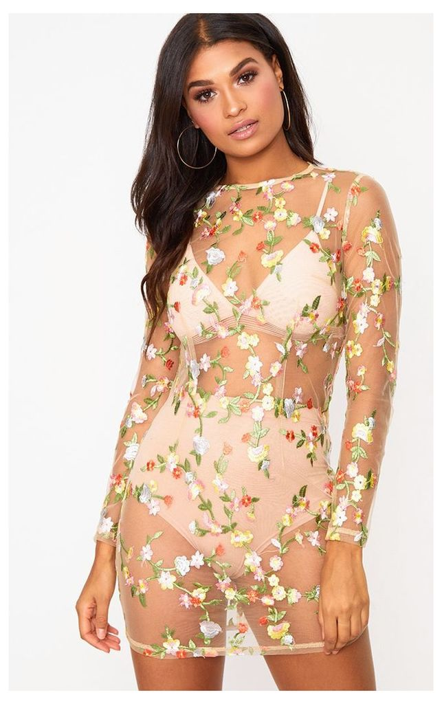Nude Floral Embroidered Sheer Lace Bodycon Dress