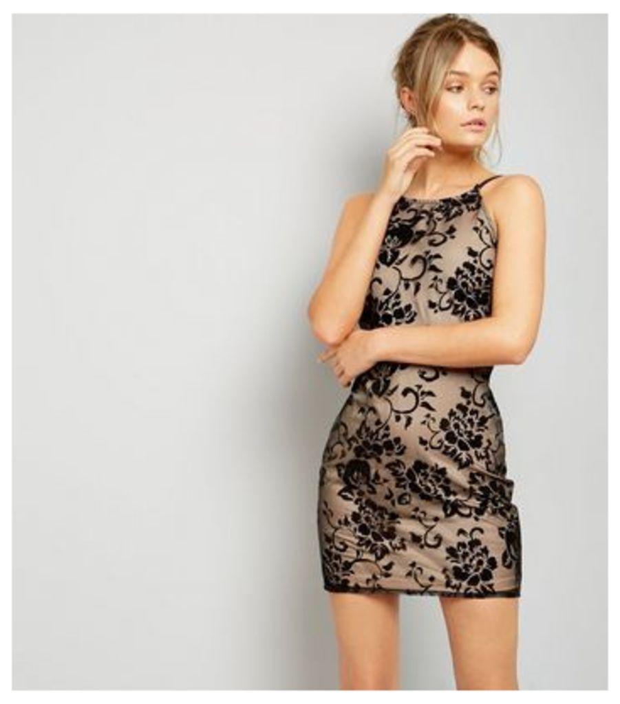 Parisian Black Lace Bodycon Mini Dress
