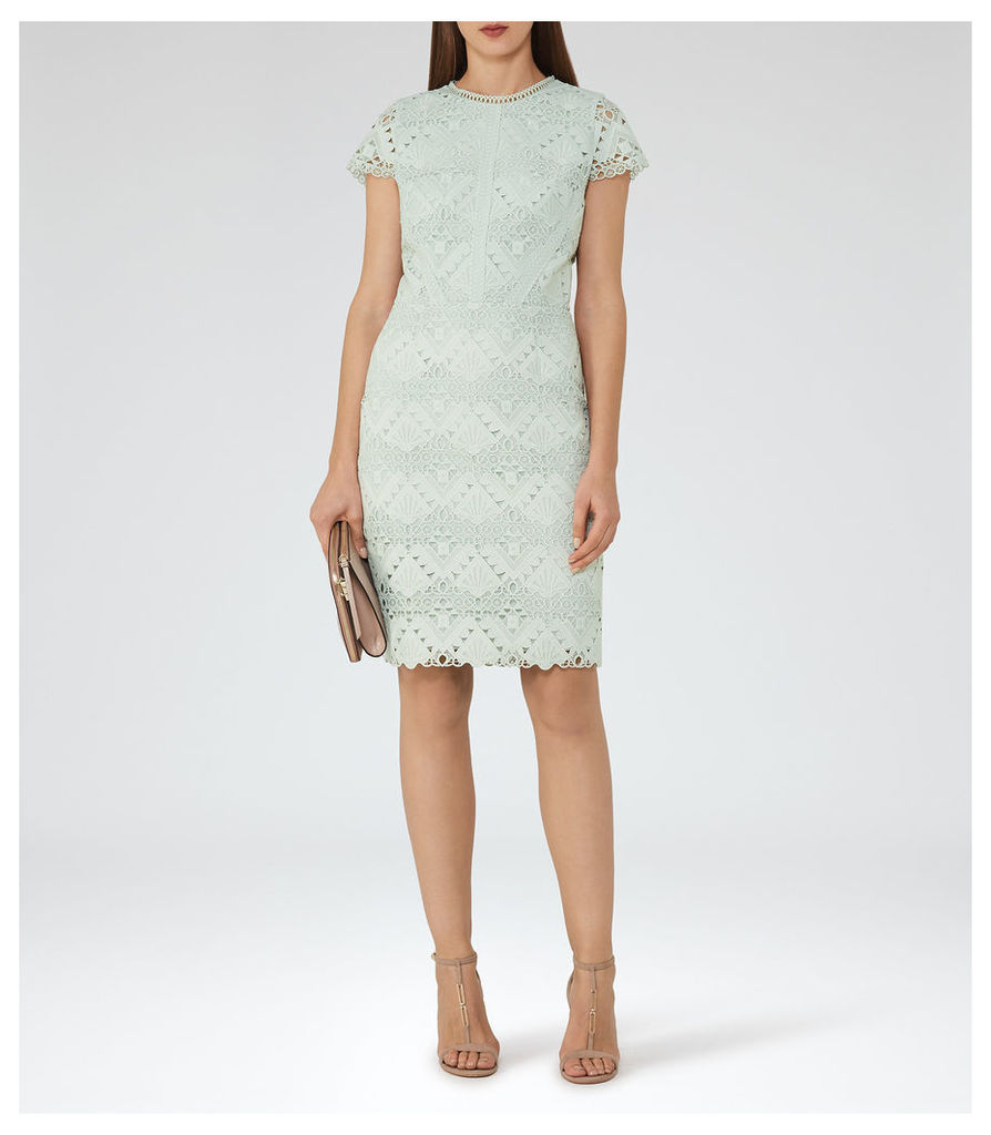 REISS Liza - Cap-sleeve Lace Dress in Brown, Womens