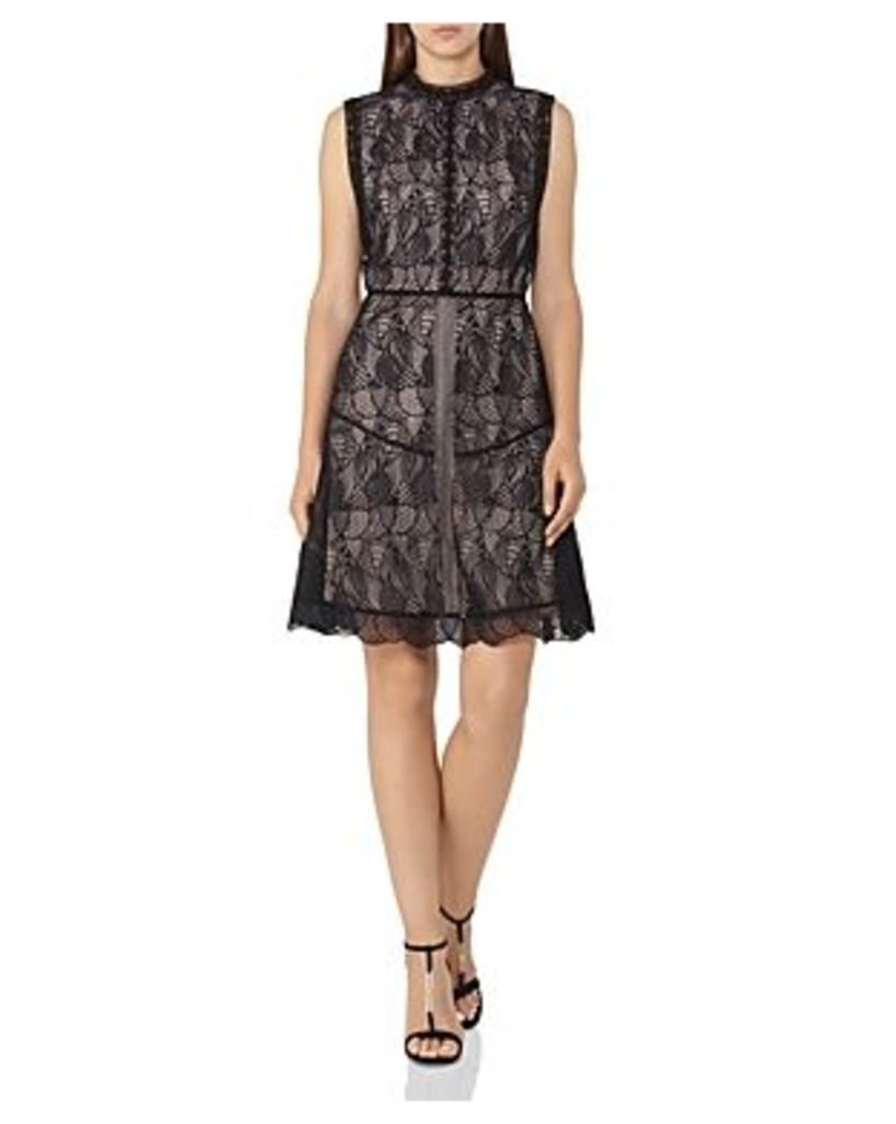 Reiss Tori Lace A-Line Dress