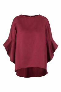 Frill Sleeve Blouse Top