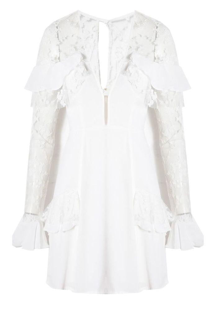 Rosebud Embroidery Mini Dress