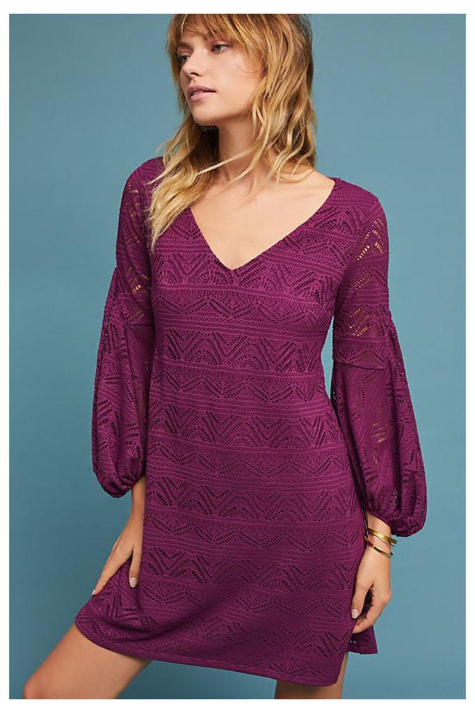 Laila Lace Dress - Plum, Size M