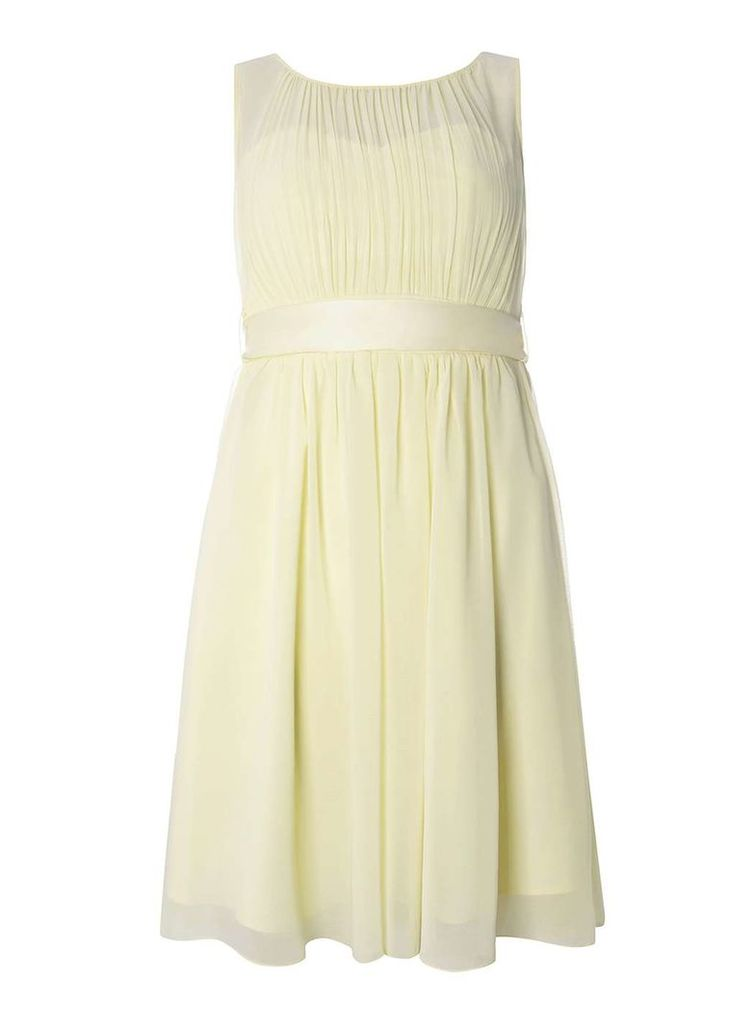 Womens **Showcase Lemon Beth Skater Dress- Yellow