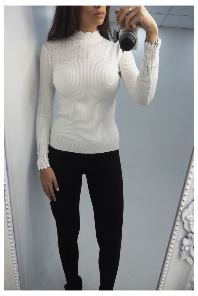 Chazz fitted high neck knitted jumper