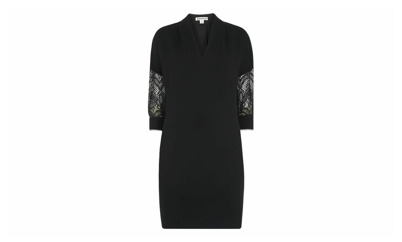 Paige Lace Sleeve Dress