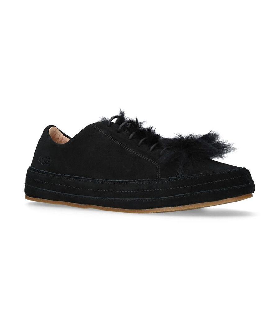 Sheepskin Blake Sneakers