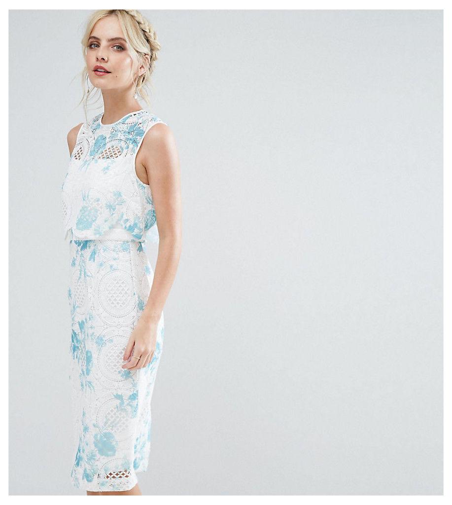 ASOS PETITE SALON Crop Top Lace Pencil Dress with Blue Floral Print - Multi