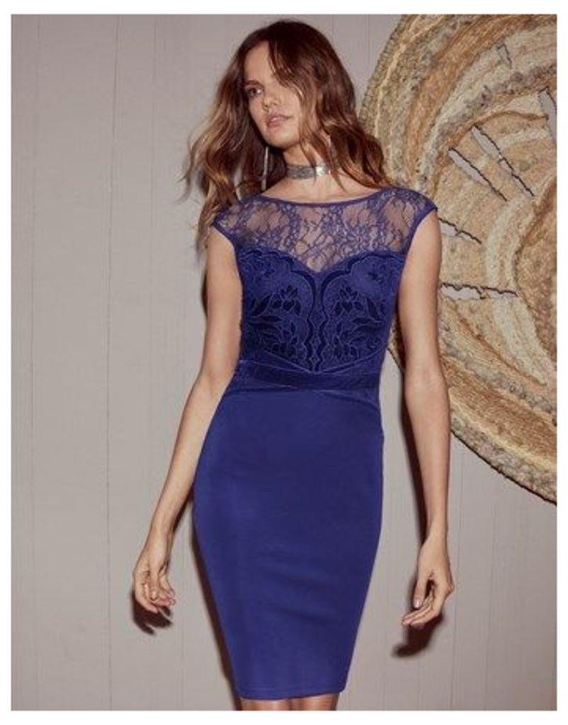 Lipsy Velvet Applique Artwork Bodycon Dress