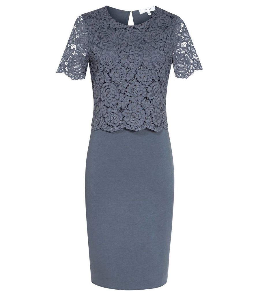 Reiss Darby - Lace And Neoprene Dress in Slate, Womens, Size 4