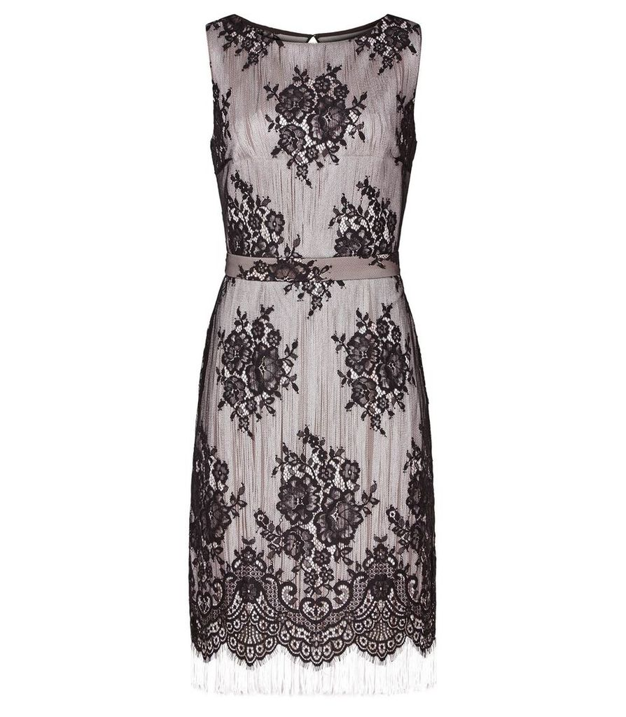 Reiss Eleonora - Lace And Fringe Dress in Black, Womens, Size 4