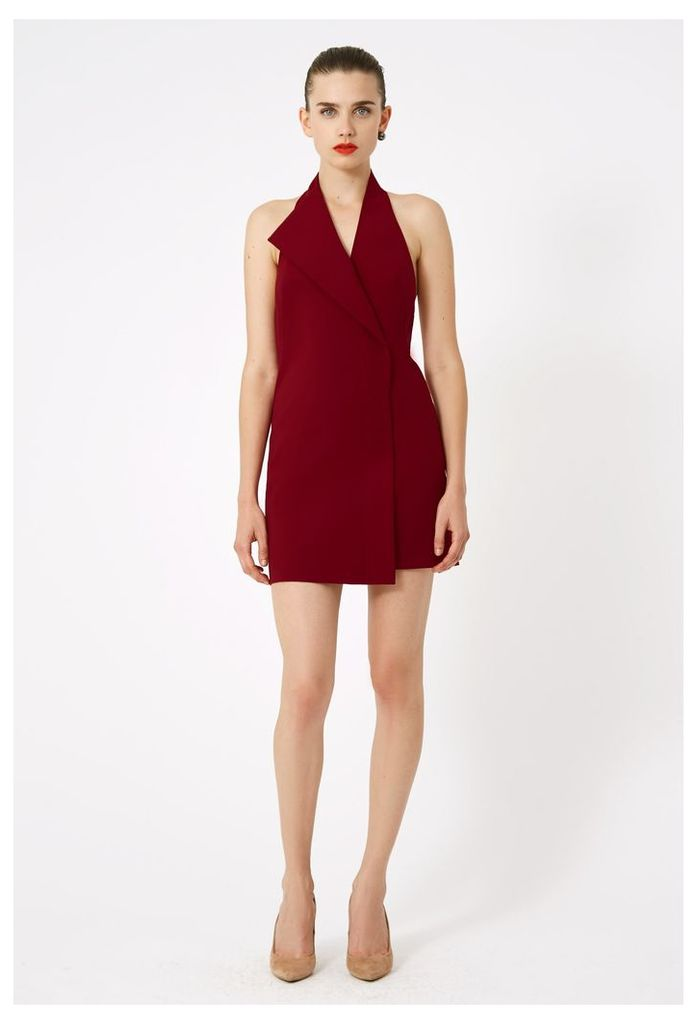 Carla Deep Plunge Mini Dress - Wine