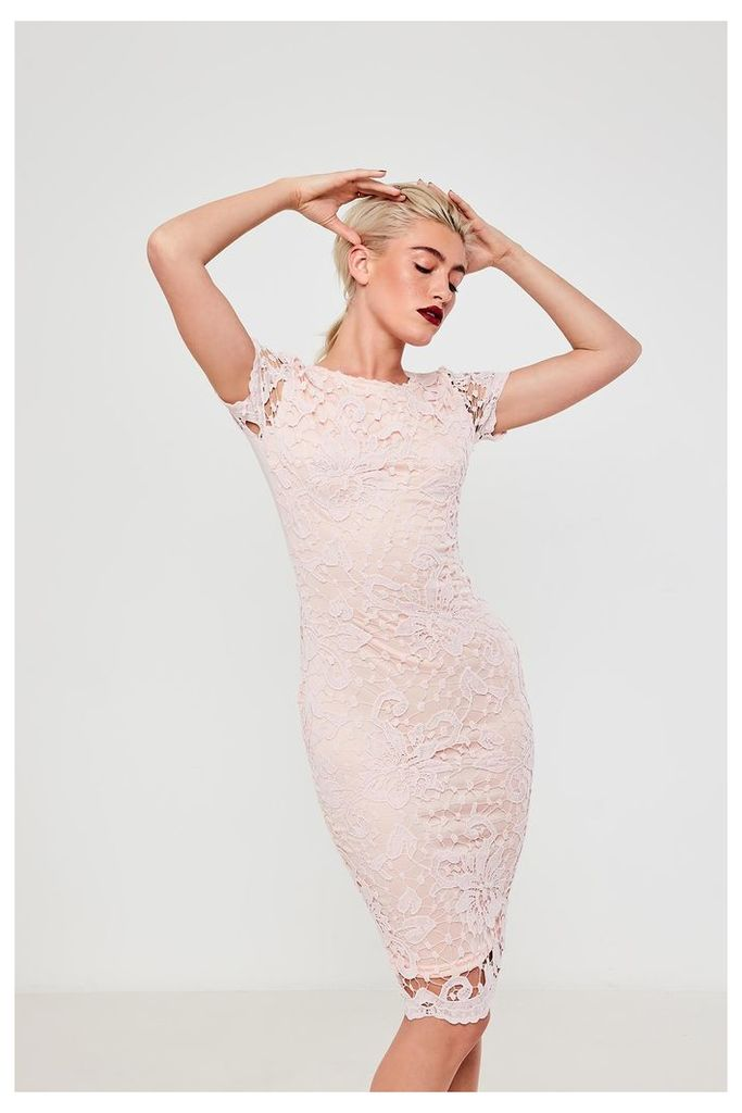 AX Paris Capped Sleeve Lace Midi Dress - Pink