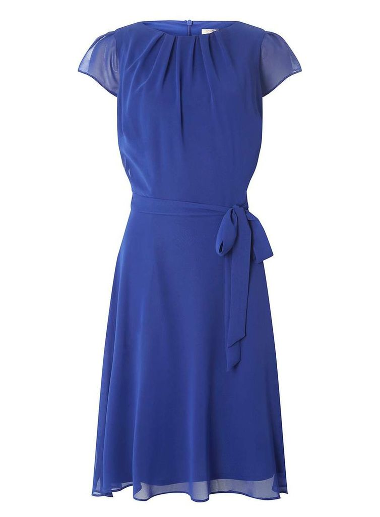 Womens **Billie & Blossom Tall Cobalt Chiffon Dress- Cobalt