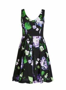 **City Chic Black Floral Print Fit And Flare Dress, Black