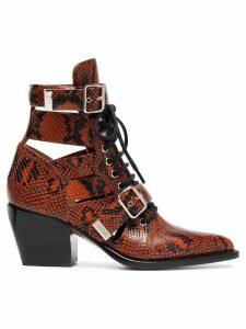 Chloé Brown Rylee 60 boot in python print calfskin