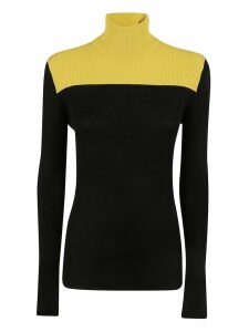 Sportmax Turtleneck Sweater