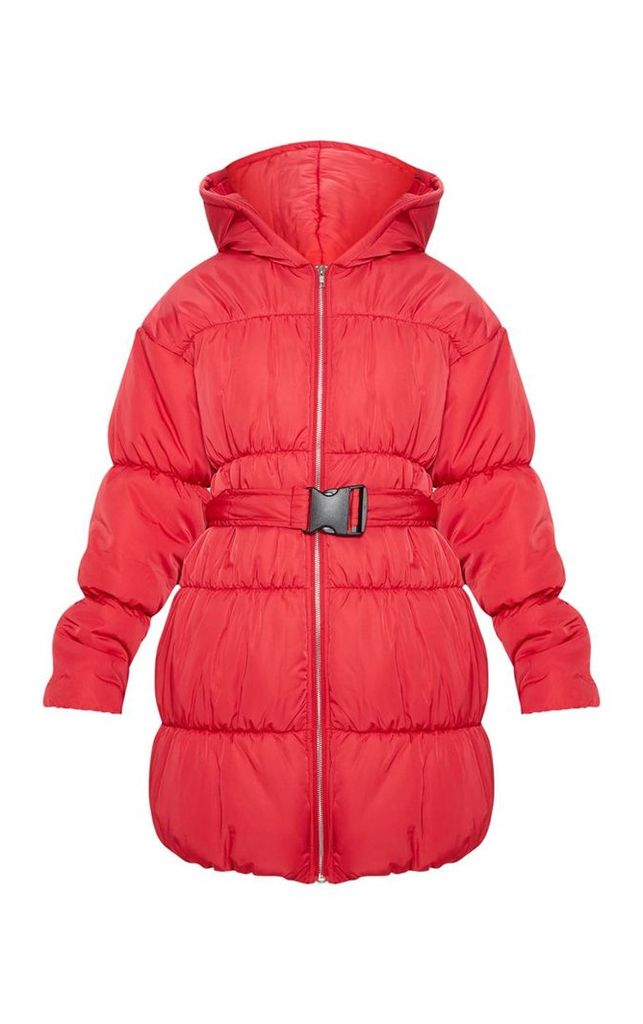 Red Belted Puffer, Red