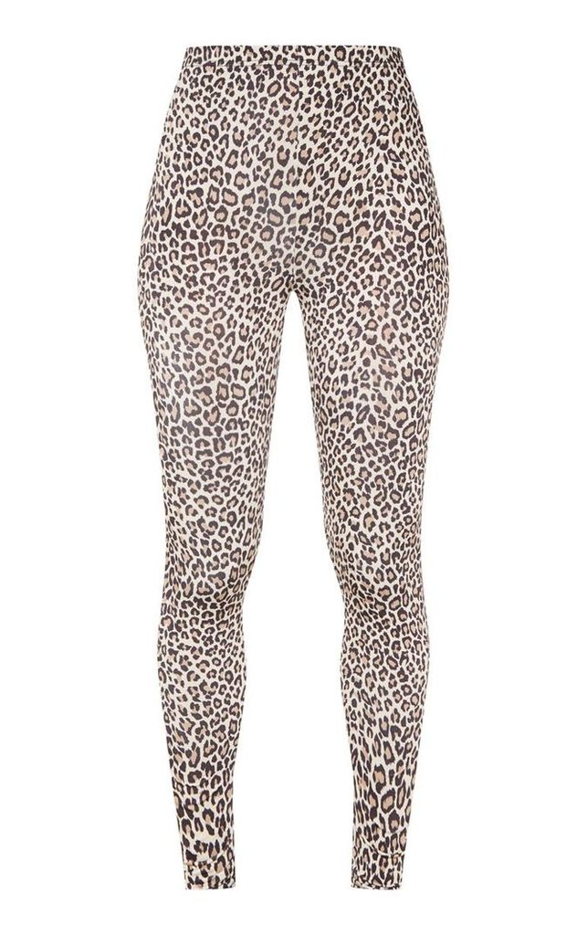 Leopard Print Soft Touch Legging, Multi