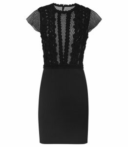 Reiss Veriana - Lace Bodice Dress in Black, Womens, Size 16